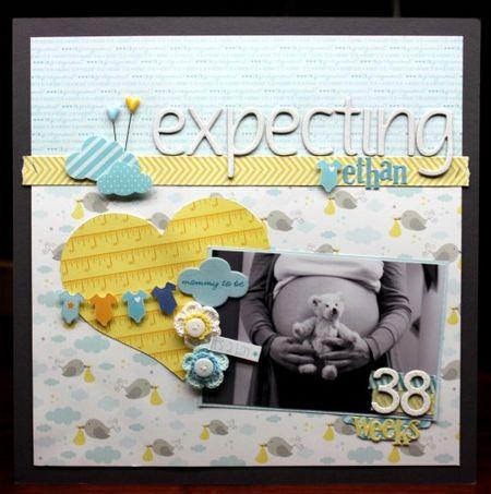 Sheri_feypel_we're_expecting_layout
