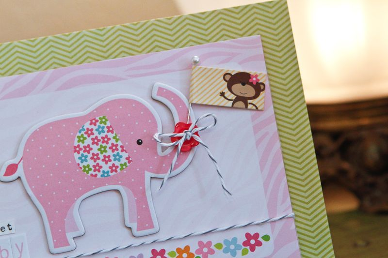 DianePayne_BabyGirl Ideas-4