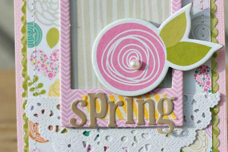 CarinaLindholm_SpringDetail_Card