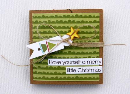 Sheri_feypel_accordiancard_christmaswishes_cover