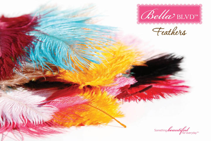 4-FEATHERS BELLA BLVD