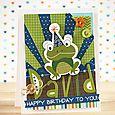 Laurie Schmidlin Birthday Frog