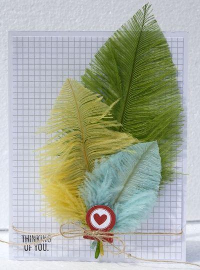 Sheri_feypel_feathers_card