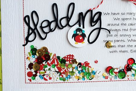 Becki Adams_Sledding_2