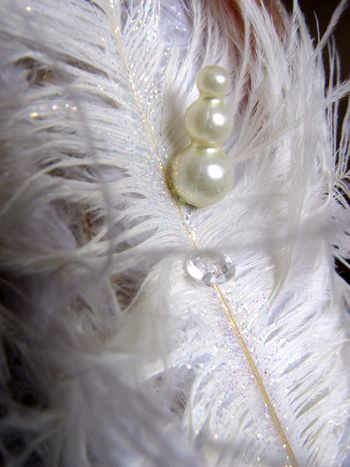 Nicole Nowosad_Feather tree detail 1
