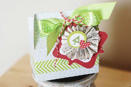 Becki Adams_Christmas Box_2
