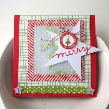 Shellye_McDaniel-Vellum_Pocket_Card1