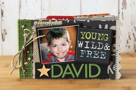 Laurie Schmidlin_DavidAlbum1_MiniAlbum