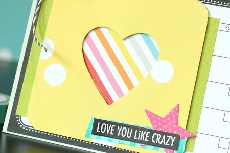 LoveLikeCrazy_AshleyMarcu_Detail