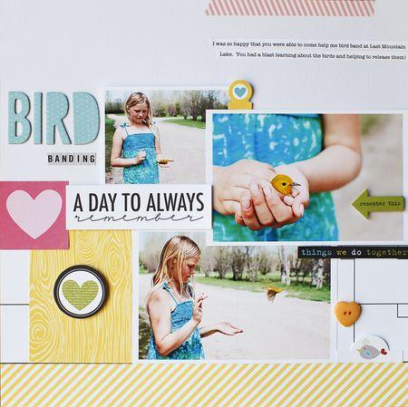 BirdBandingLayout-JamieHarder