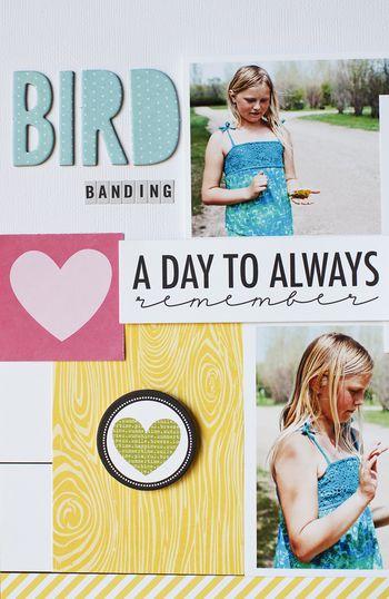 BirdBandingLayoutDetail2-JamieHarder