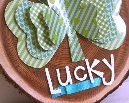 LuckyShamrockDetail1_Ashley