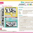Color Chaos & Invisibles Project Sheet 2015