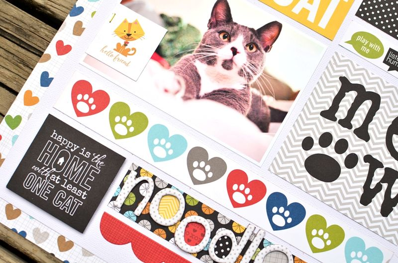 Jenchapin meow (3)