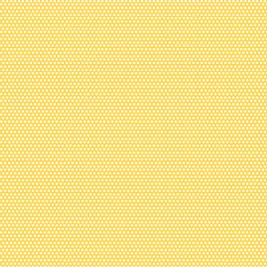 1565_12x12_PAPER_PAD_l