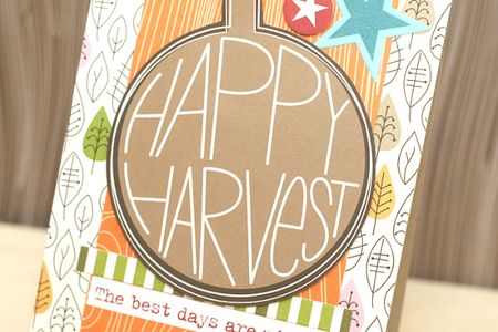 HappyHarvest_AshleyMarcu_Detail