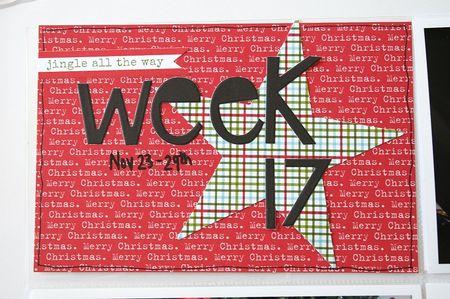 WendyAntenucci_Week17-3