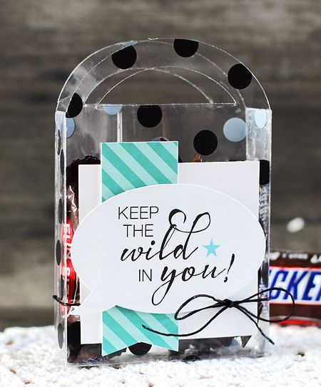 LaurieSchmidlin_TreatBoxes_KeeptheWildinYou