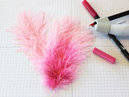 LaurieSchmidlin_eBrush1_Feathers