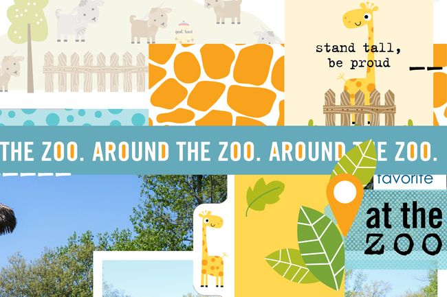 Meganklauer_zoopage_detail1
