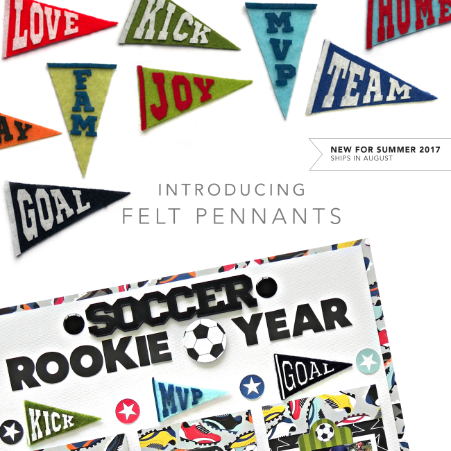 INTRODUCTION_GRAPHICS_FELTPENNANTS