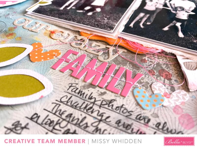 Our Crazy Family2