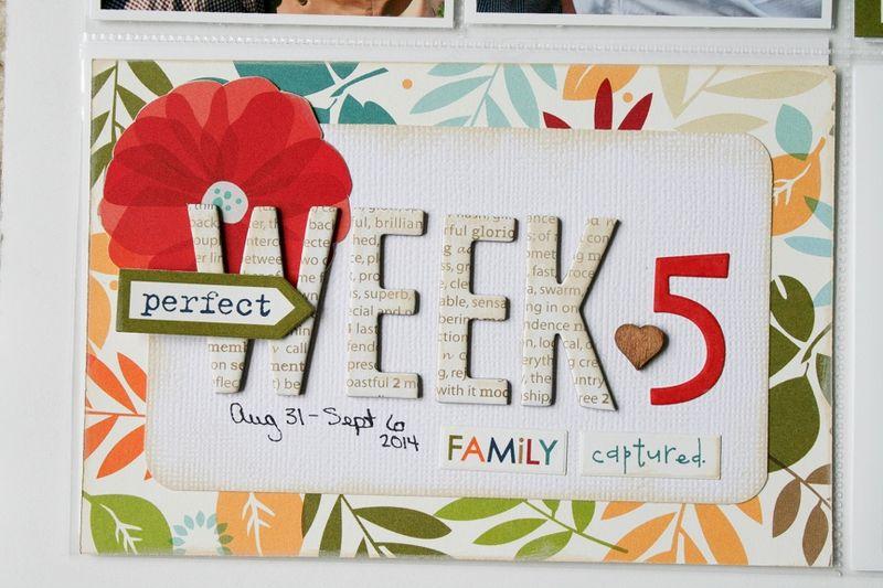 WendyAntenucci_Week5_detail2