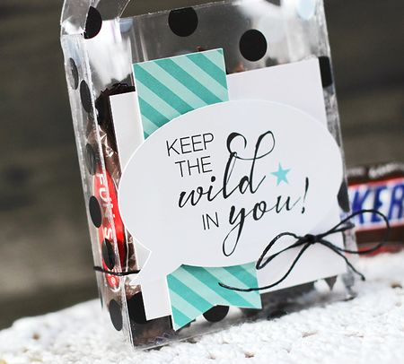 LaurieSchmidlin_TreatBoxes_KeeptheWildinYou(Detail)