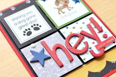 Jenchapin rover card (1)