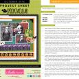 Spooktacular Project Sheet 2016