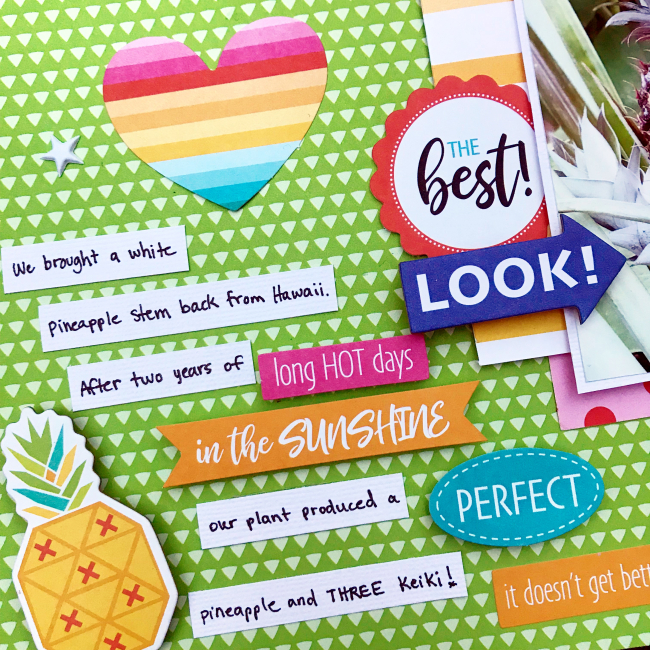 Pineapple scrapbooking layout by Heather Leopard 4