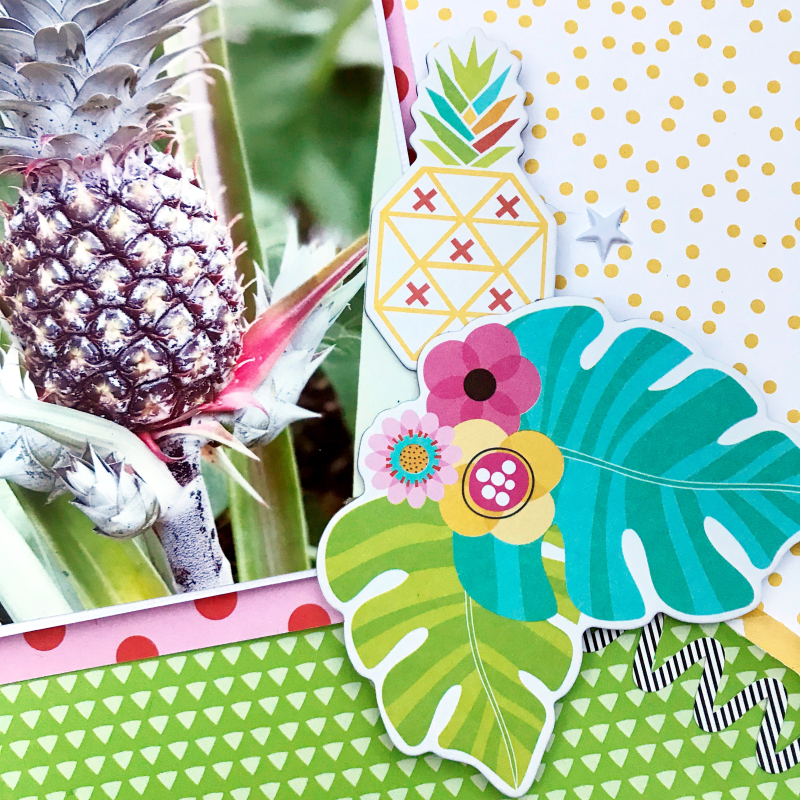 Pineapple scrapbooking layout by Heather Leopard 3