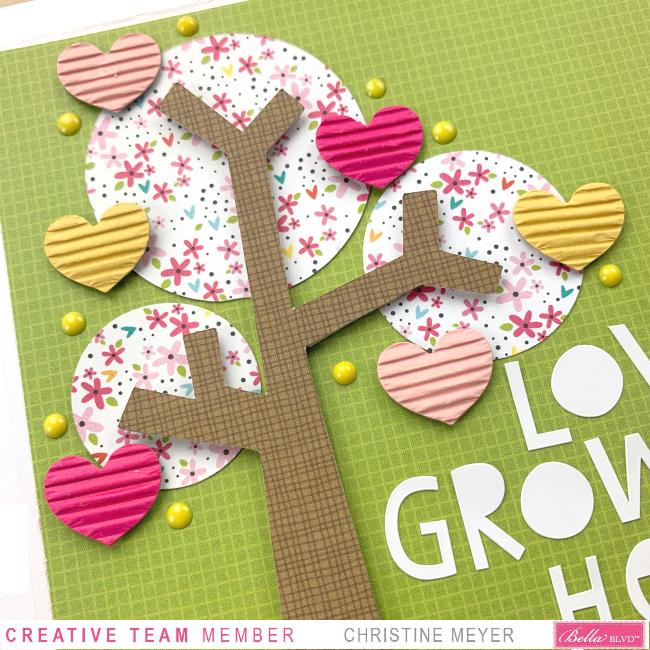 ChristineMeyer.WCMDLoveGrowsHere.October5.CU1