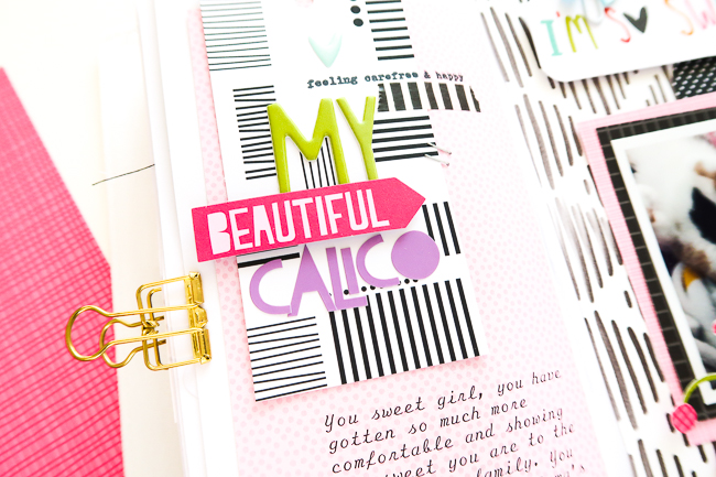 PatriciaRoebuck_MyBeautifulCalico_Detail3.jpg