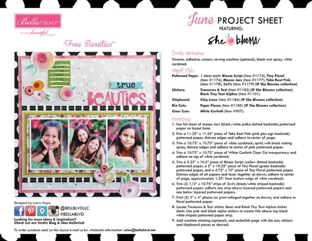 IF She Blooms Project Sheet 2016